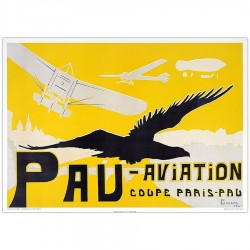 Pau Aviation